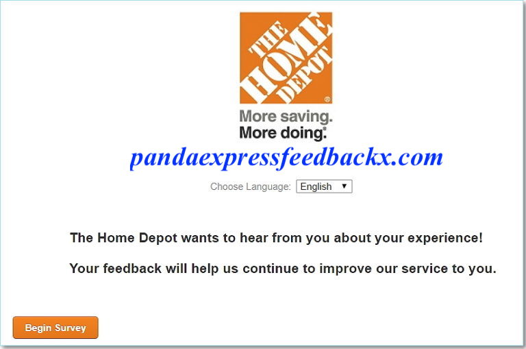 homedepot survey page